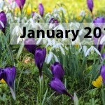 january-snowdrops-image